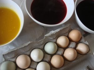 Ready, steady, go - note the glorious colors already on the Restoration Farm Eggs