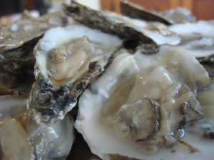 These Maryland oysters were quite creamy and not super-salty