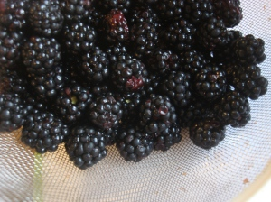 Treat these berries gently and use them immediately!