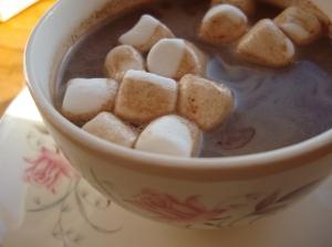 2014-01-30 04.32.27 chocolate