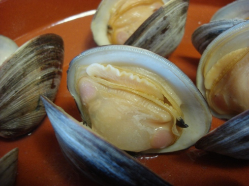 yum, clams