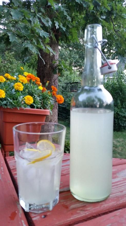 2015-08-15 19.43.41 lemonade